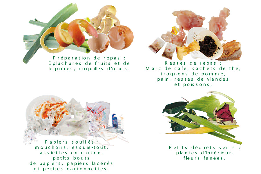 Collecte en sac verts biod chets d chets fili res - Que mettre dans un composteur de jardin ...